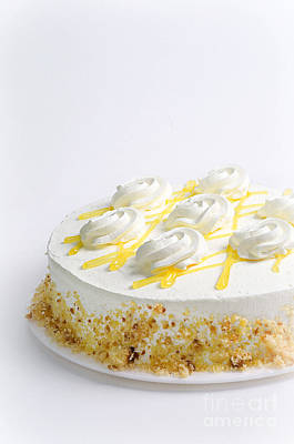Andee Design White Photograph - Lemon Chiffon Cake Painterly 1 by Andee Design