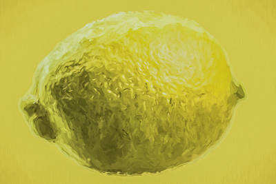 Lemon Food Painted Digitally Macro Art Print by David Haskett