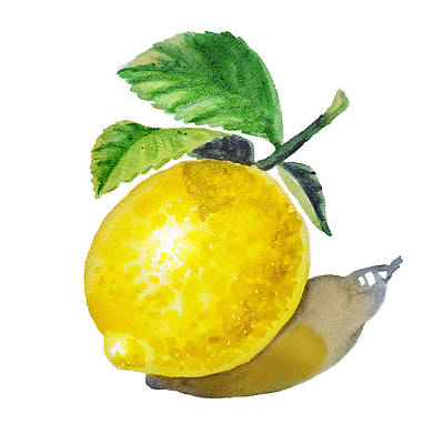 Lemon Painting - Artz Vitamins The Lemon by Irina Sztukowski