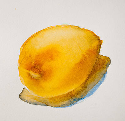 Painting - Lemon Study by Jani Freimann