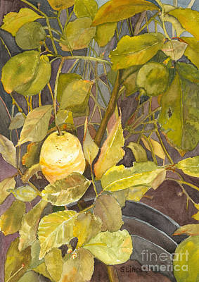 Lemon Tree Art Print by Sandy Linden