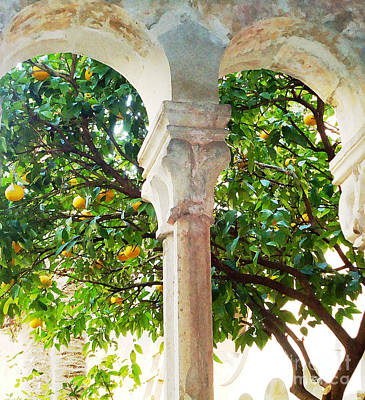Lemon Tree Very Pretty				 Art Print by Ann Johndro-Collins