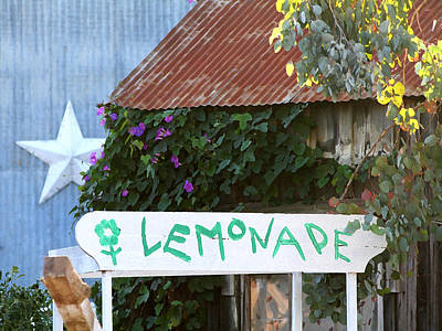 Luis Sales Photograph - Lemonade Stand by Art Block Collections