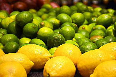 Photograph - Lemons And Limes by Robert Meyers-Lussier