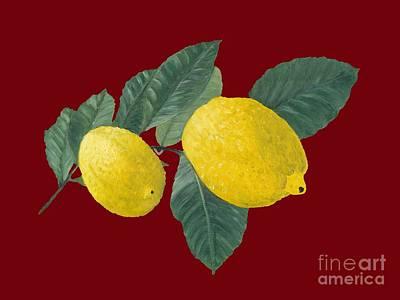 Lemon Photograph - Lemons On Red by Kerstin Ivarsson