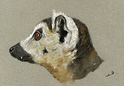 Lemur Head Study Original by Juan  Bosco