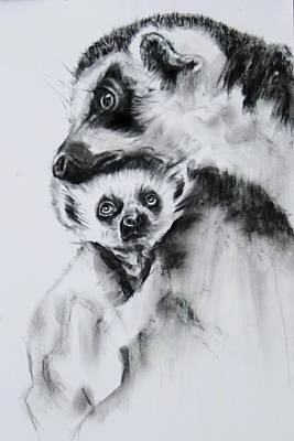 Meerkat Mixed Media - Lemurs  by Jean Cormier