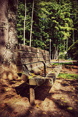 Photograph - Lenoir Park Bench by Amber Summerow
