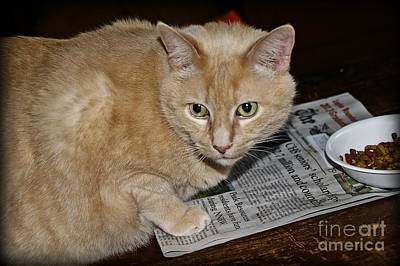Leo Reading The Paper And Eating Snacks Art Print by JW Hanley