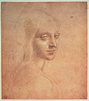 On Paper Photograph - Leonardo Da Vinci, Portrait Of A Girl by Everett