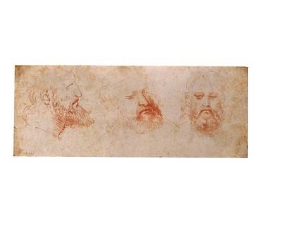 On Paper Photograph - Leonardo Da Vinci, Profile by Everett