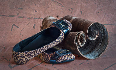 Photograph - Leopard Flats Still Life by Patti Deters