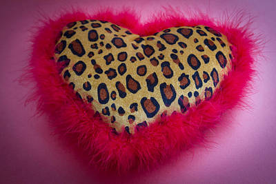 Photograph - Leopard Heart by Patrice Zinck