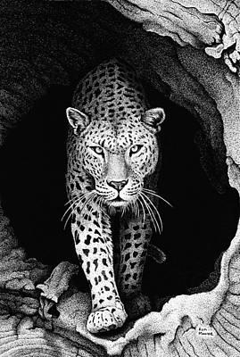 Bid Drawing - Leopard In A Log by Ron Monroe