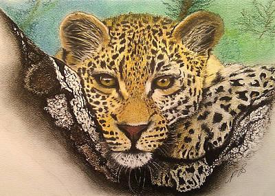 Drawing - Leopard In A Tree I. by Paula Steffensen