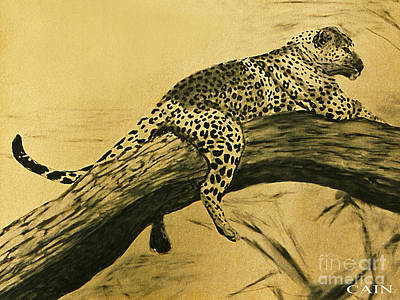 Painting - Leopard In Tree Art Print by William Cain