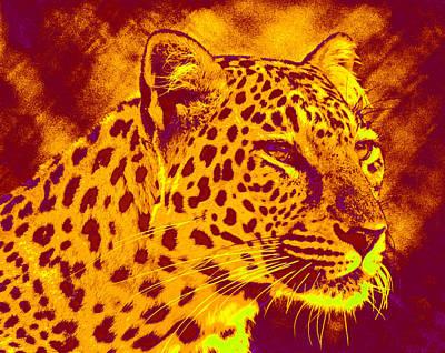 Digital Art - Leopard by Jane Schnetlage