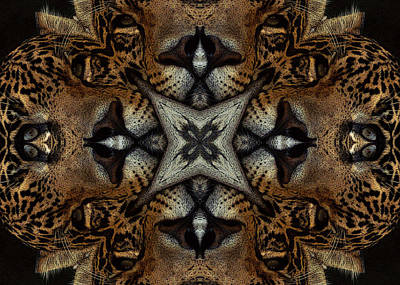Leopard Kaleidoscope  Art Print