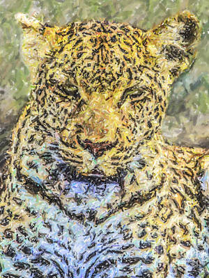 Leopard Digital Art - Leopard Panthera Pardus Portrait by Liz Leyden