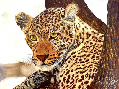 Painting - Leopard Point Of View by Phillip Allen