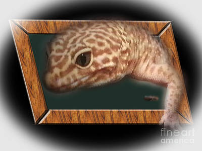Photograph - Leopard Skink by Donna Brown