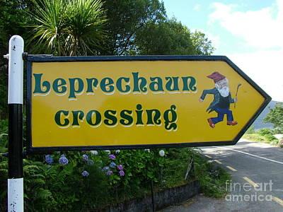Photograph - Leprechaun Crossing by Joe Cashin