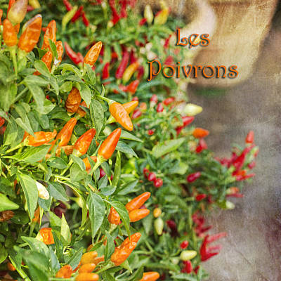 Photograph - Les Poivrons by Marianne Campolongo