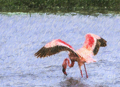 Flamingo Digital Art - Lesser Flamingo Filter Feeding Lake Nakuru Kenya by Liz Leyden