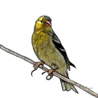 Digital Art - Lesser Goldfinch - 2235 F S M by James Ahn