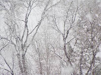 Photograph - Let It Snow 1 by Diane Alexander
