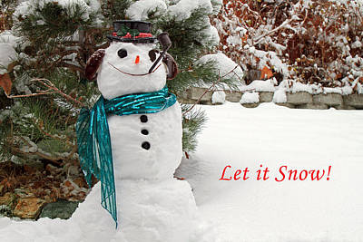 Photograph - Let It Snow by Donna Kennedy