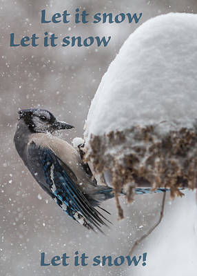 Photograph - Let It Snow Greeting Card by Patti Deters