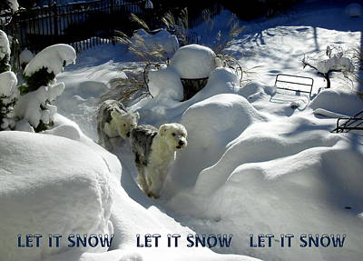 Photograph - Let It Snow by Jodie Marie Anne Richardson Traugott          aka jm-ART