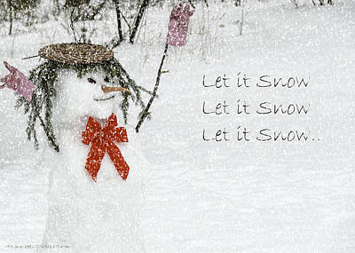 Photograph - Let It Snow Let It Snow by LeeAnn McLaneGoetz McLaneGoetzStudioLLCcom