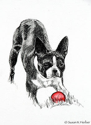 Watercolor Pet Portraits Drawing - Let The Game Begin by Susan Herber