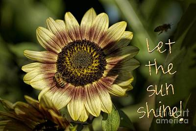 Photograph - Let The Sun Shine by Peggy Hughes
