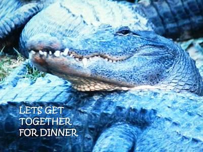 Photograph - Lets Get Together For Dinner by Belinda Lee