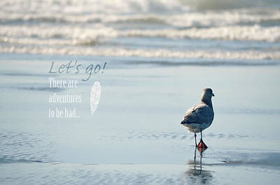 Photograph - Let's Go by Robin Dickinson
