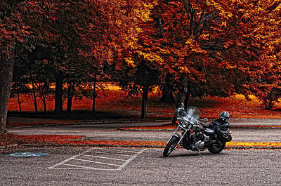 Bachelor Pad Photograph - Let's Ride by Mark Papke