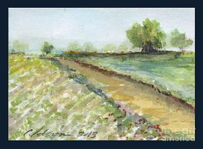 Lettuce Drawing - Lettuce Field by Cathy Peterson