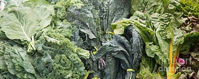 Lettuce Photograph - Lettuce by Rebecca Cozart
