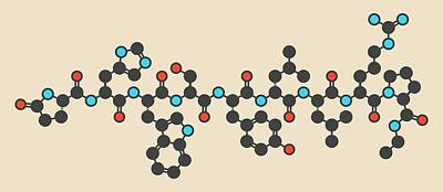 Leuprolide Gnrh Analog Drug Molecule Art Print