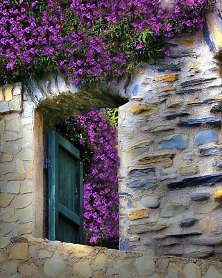 Levanto Bougainvilla Art Print