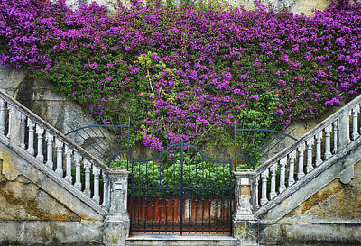 Photograph - Levanto Facade by Gigi Ebert