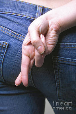 Ass Photograph - Liar by Diane Diederich