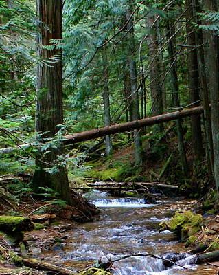 Photograph - Liberty Creek 2014 #2 by Ben Upham III