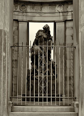 Photograph - Liberty Imprisoned by Joshua House