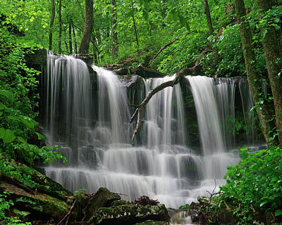 Ozarks Photograph - Lichen Falls, Ozark Mountains, Arkansas by Tim Fitzharris