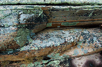 Photograph - Lichen On The Rocks-1 by Patrick Boening