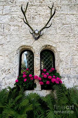 Lichtenstein Photograph - Lichtenstein Castle Windows Wall And Antlers - Germany by Gary Whitton